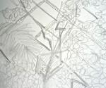 jardin des plantes,dessin,croquis,aquarelle,cours de dessin,cours d'aquarelle,peidre les fleurs