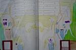 anatomie comparée,dessin d'imagination, interprétation, muséum,