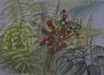 muséum du jardin des plantes,serres tropicales,dessiner les plantes,croquis