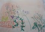 4 - Parc Floral - 03.jpg