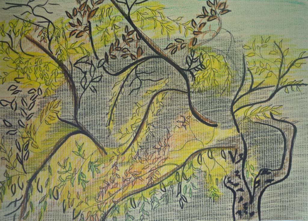 Dessiner dans les serres du jardin des plantes maj couleur - Dessiner un jardin ...