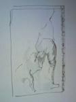 exposition,dessins,parmigianino,art italien xvie,cours de dessin,dessiner au louvre