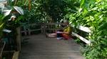 jardin parisien, Buttes Chaumont, Parc floral de Vincennes, Serres du jardin des plantes, Serres d'Auteuil,