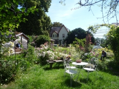 0 stage Trois épis - 05:07:16 bien installées - 7 Lundi l'ambiance du jardin Maud et Monique .jpg
