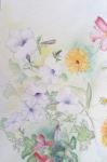 dessiner à la maison, cours de dessin, dessiner les fossiles, dessiner les fleurs, aquarelle, dessienr à l'encre, collage,