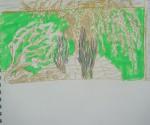 Muséum, jardin alpin, cours de dessin, cours de peinture, arbre, serre tropicale, jardin des plantes,