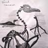 paléontologie, anatomie comparée, muséum, squelette, ossature, dessin, croquis, dessin d'art, dessin feutre,
