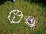 dessiner au jardin des palntes,dessiner les fleurs,iris