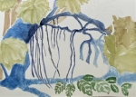 Muséum, MNHN, dessiner au jardin des palntes, dessiner la flore, serre tropicale,