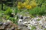 jardin alpin.JPG