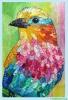 collage oiseaux 7.jpg