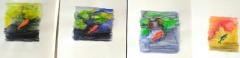 jardin alpin,dessiner la nature,cours de dessin,cours d'aquarelle,paris,dessiner au jardin des plantes