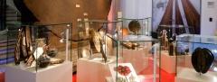 Muséum, galerie de botanique, cours de dessin, dessiner la flore, dessin au crayon, dessin à la plume, dessin au feutre,