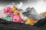 collage paysage 3 (2).jpg