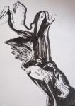 cours de dessin, muséum, croquis sur le vif, couleur, dessin documentaire, dessin à l'encre