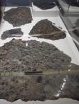 météorites, exposition, muséum, couleurs, dessiner les pierres,