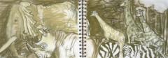 dessin, croquis, muséum; grande galerie, dessiner les animaux, dessiner les insectes, dessiner les singes,