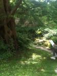 0 jardin.JPG