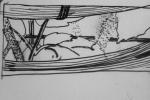 cours de dessin, dessiner les plantes, dessiner au muséum, dessiner en paléontologie, dessiner la flore, serres du jardin des plantes,