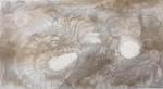 dessiner à la maison,cours de dessin,dessiner les fossiles,dessiner les fleurs,aquarelle,dessienr à l'encre,collage