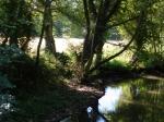stage de dessin peinture,dessiner la nature,dessiner c'est voir,technique de dessin,technique d'aquarelle,dessiner au bord de la rivière