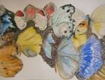 papillons, inspiration, croquis, aquarelle, pastel,  couleur, dessin, Paris,