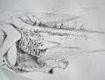 dessiner au muséum, dessiner au jardin des plantes,