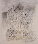 stage de dessin, stage de peinture, stage d'aquarelle, dessiner en Auvergne, peindre en auvergne, Ebreuil, Hameau de Chavagnat, cours de dessin, cours d'aquarelle, dessiner la nature, dessienr sur le motif, dessienr le paysage