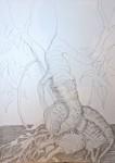 muséum,paléontologie,galerie d'anatomie comparée,croquis,dessin,crayon de couleur,craie néocolor,dessin documentaire,dessin artistique