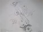 jardin des plantes.stage de dessin, cours de dessin, atelier de dessin, galerie de paléontologie anatomie comparée