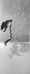 0 Muséum Muriel XL 1 NOV. DEC. 2016 ours squelette .jpg