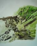 stage dessin, stage peinture, dessiner la nature, marais poitevin, cours de dessin cours de peinture
