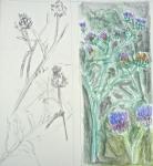 jardin parisien, Buttes Chaumont, Parc floral de Vincennes, Serres du jardin des plantes, Serres d'Auteuil, dessiner la nature, peindre la nature, cours de dessin, cours d'aquarelle, cours de peinture.