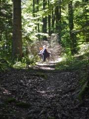 0 stage Trois épis - 05:07:16 bien installées - 1 forêt.jpg