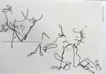 dessiner en confinement, dessiner à la maison, dessiner au feutre, aquarelle, nature morte, still life,