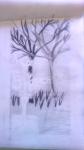 dessiner à la maison, dessiner la flore,