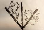 c bambous (6).jpg