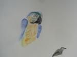 M.2014:10:?? Muriel oiseaux - 7.jpg